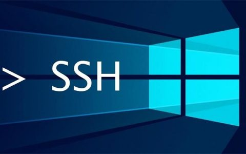 Xshell、MobaXterm等5款主流SSH客户端对比