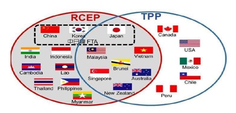 《区域全面经济伙伴关系协定》(RCEP)成功签署!外贸迎来利好